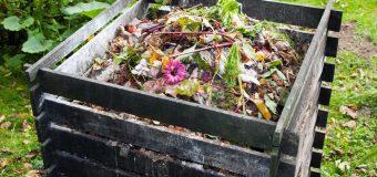 Compostiera da giardino: guida all'acquisto